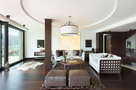 interior spaces: architecture, modern house, beautiful interiors, living room