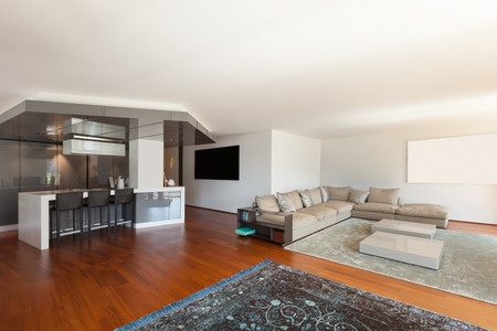 living room: Interior of apartment, wide living room, parquet floor