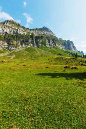 pasturage: Typical European Alpine landscape, pastures and mountains Stock Photo