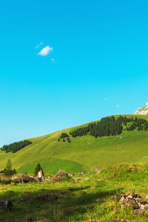 mountain landscape: Mountain landscape