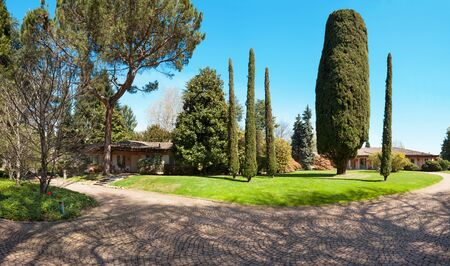 clear skies: large park of a villa with cypresses, outdoors