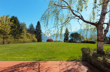 garden lawn: Green lawn and beautiful house in a sunny spring day