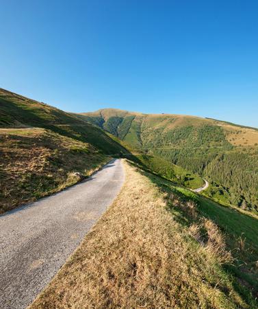 baro: Swiss mountain landscape, road through pastures