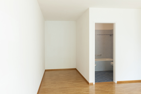 building wall: interior of an apartment, empty room with bathroom, parquet floor