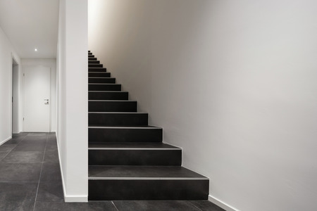 entryway: Architecture, modern entryway, interior with black stair case