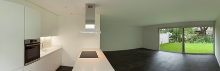 apartment living: interior of empty apartment, wide living room with kitchen