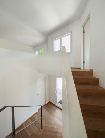 wood ceiling: Interior, wooden staircase of a modern loft
