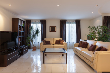 interior room: living room of a modern apartment, leather sofas