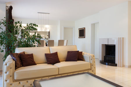apartment living: living room of a modern apartment, leather divan