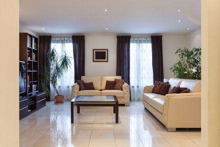 living style: living room of a modern apartment, leather sofas