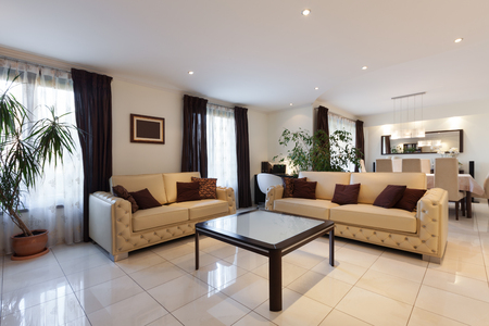 apartment living: living room of a modern apartment, leather sofas