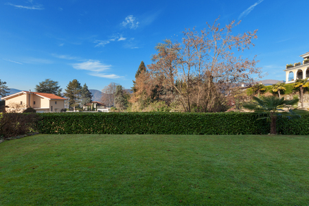 garden lawn: the garden with hedge of a building, external Stock Photo