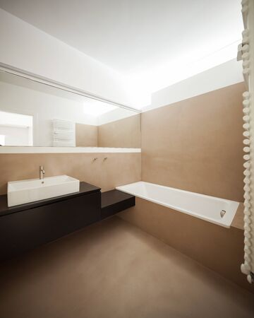 luxury house: Modern bathroom in luxury house