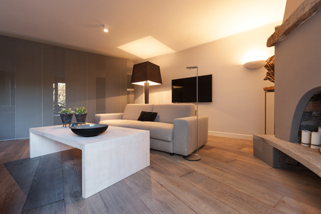 Interior of house, modern comfortable living room with fireplace Archivio Fotografico