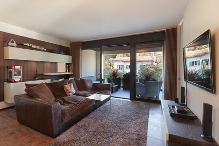 furnished: Interiors of new apartment , living room with divan and television Stock Photo