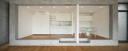 modern apartment: Interior of modern kitchen of concrete apartment with parquet floor Stock Photo