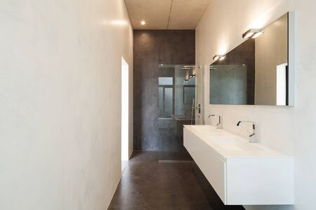 concrete floor: interior of apartment, modern bathroom with sink and shower Stock Photo