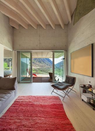 loft living: Interior of a modern loft, living with red carpet. concrete walls