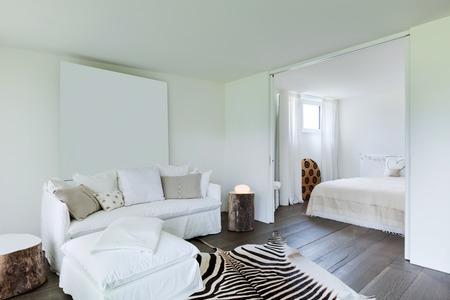 Gemütliches Wohnzimmer, Leder Zebra Auf Dem Boden, Weiße Wände ...