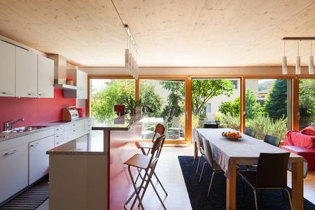 Interno di una casa ecologica, cucina moderna