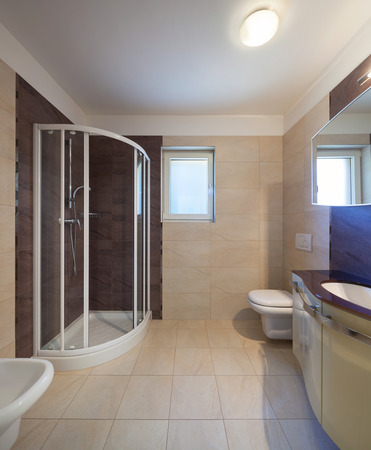 house windows: Modern bathroom interior with tiled walls, shower