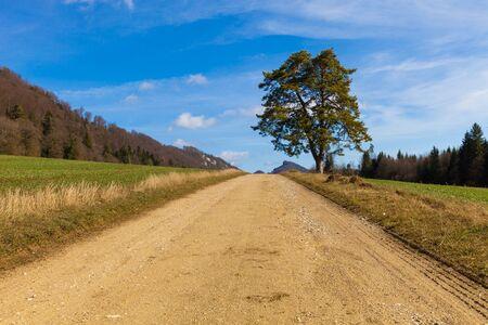 dirt road in countryside, nobody