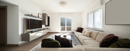 wood floor: Modern apartment, view of living room from the divan