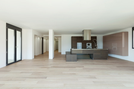 Kitchen in modern apartment, large room. Nobody inside