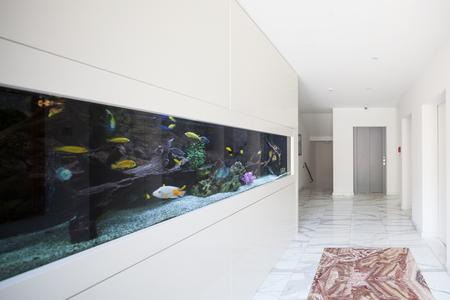 public aquarium: Modern building, entrance with aquarium