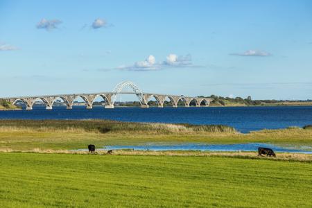 Queen Alexandrine Bridge, green field and cow.