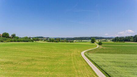 veduta aerea di campi verdi