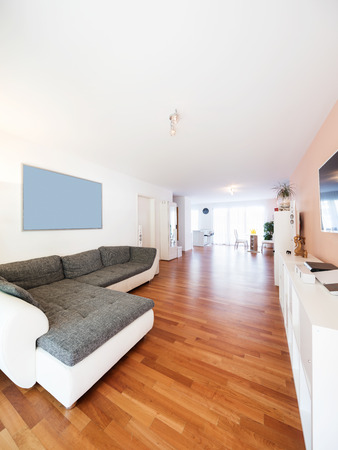Spacious living room with large sofa. Very intimate and welcoming apartment Zdjęcie Seryjne