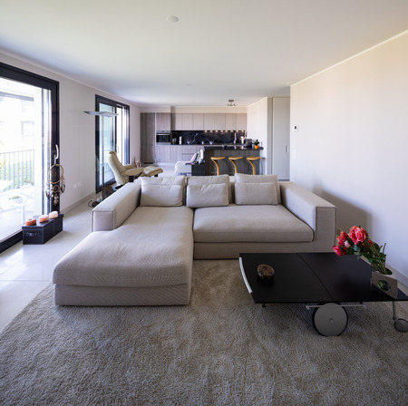 Living room and kitchen in open space, modern apartment. Nobody inside