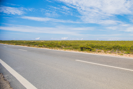 Road on a summer day with blue sky. Portuguese landscape