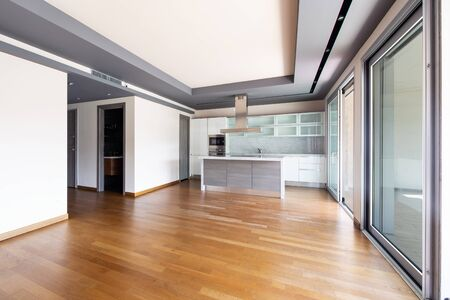 Living room with kitchen island, modern apartment with large windows and parquet. No one inside