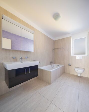 Bathroom with toilet, cabinet with sink and mirror and bathtube. Nobody inside Stok Fotoğraf