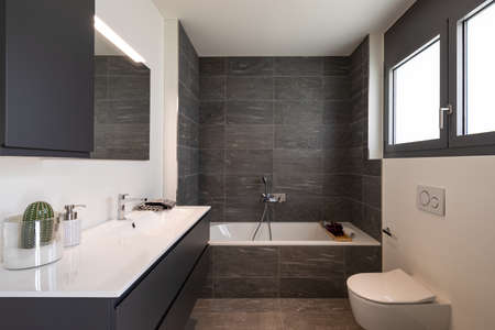 Interior of an empty and luxurious modern bathroom, nobody inside. It is a private home Foto de archivo