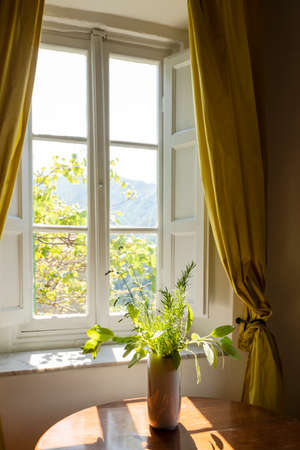 Window seen from the inside on a green and romantic landscape. Conceptual photography looking away Standard-Bild