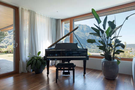 Black piano, patio with garden. Large window overlooking the valley with lake view. Nobody inside Standard-Bild