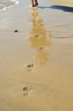 footprints on the beach, near the water photo
