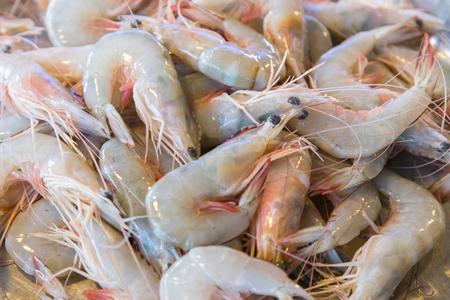 Shrimp for sale in the market. Zdjęcie Seryjne