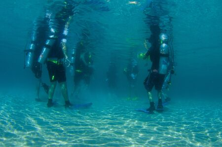 nekton: Divers standing in shallow water just prior to a dive. Stock Photo