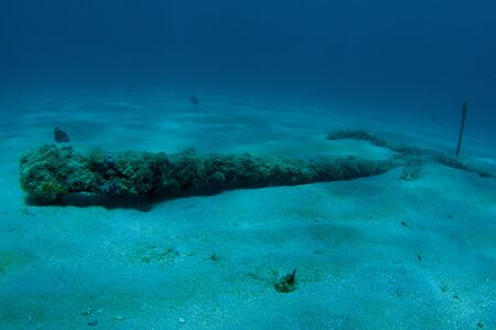 Artificial Reef consisting of artificial cannons, picture taken in south east Florida. photo