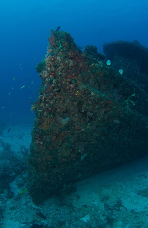 Bow section of an old tug, all surfaces encrusted with coral growth.  photo