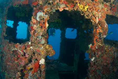 Outside the wheel house of an old tug, all surfaces encrusted with coral growth.