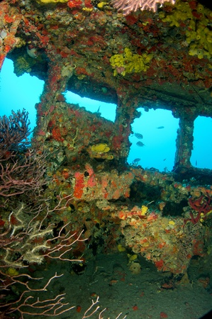 wheel house: Inside the wheel house of an old tug, all surfaces encrusted with coral growth.  Stock Photo