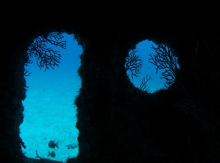 reeffish: Inside a ship wreck looking outside.
