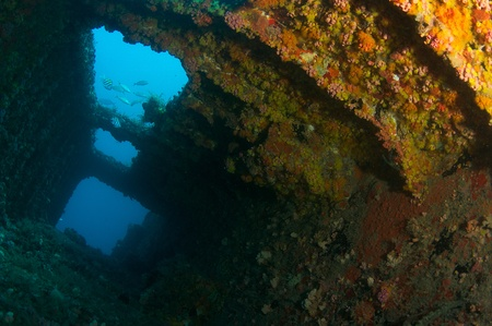 Ship sunk as an artificial reef in south east Florida. Stock Photo - 12823803