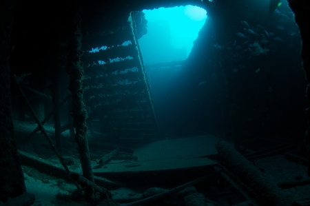 ship wreck: Inside the hull of an old vessel sunk for an artificial reef. Artificial reef named Ancient Mariner.