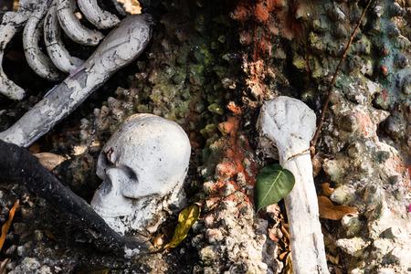 huesos humanos y el cr�neo en el templo en Tailandia. photo